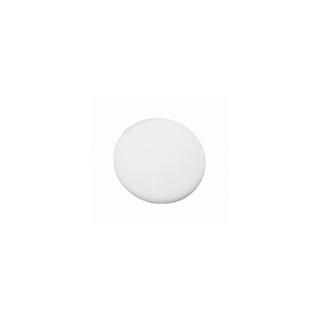 Medaillon en polystyrene<br />8 cm ø