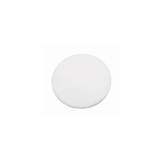 Medaillon en polystyrene<br />10 cm